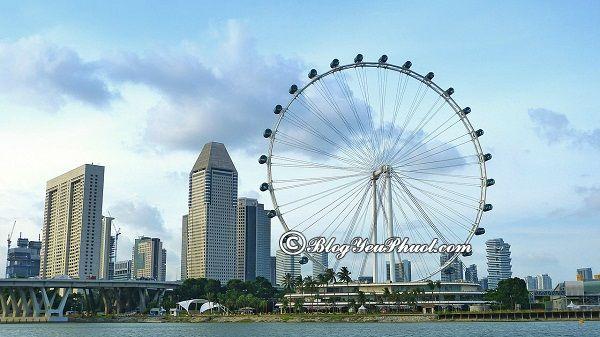 Ở Singapore có vòng đu quay lớn nào dành cho trẻ em không? Địa điểm tham quan, du lịch dành cho trẻ em ở Singapore