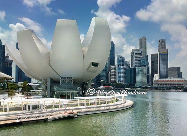 Điểm du lịch hấp dẫn dành cho trẻ nhỏ khi du lịch Singapore; Nên cho trẻ em đi chơi ở đâu khi du lịch Singapore