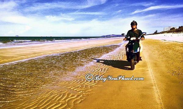 Đường đi từ Huế tới Bình Định bằng xe máy: Hướng dẫn, kinh nghiệm đi du lịch Bình Định từ Huế