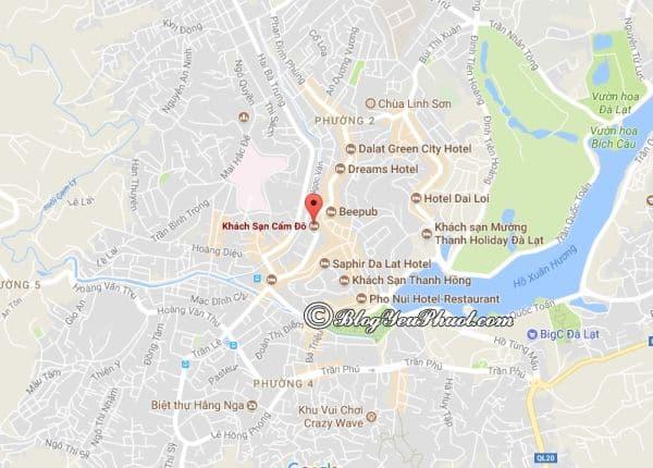 Khách sạn 3 sao Cẩm Đô Đà Lạt nằm ở đâu? Địa chỉ của khách sạn Cẩm Đô Đà Lạt