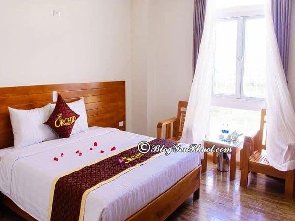 Có nên ở khách sạn Orchid Đà Nẵng? Review phòng ốc, tiện nghi, nội thất của khách sạn Orchid Đà Nẵng
