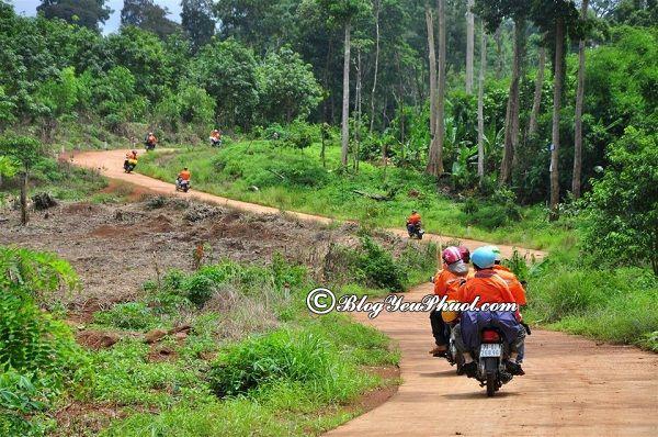 Khoảng cách đi từ Sài Gòn tới Bình Phước: Hướng dẫn đường đi du lịch Bình Phước từ Sài Gòn