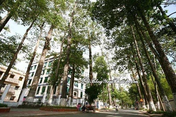 Hướng dẫn đường đi phượt Trà Vinh từ Sài Gòn: Từ Sài Gòn tới Trà Vinh bằng phương tiện gì?