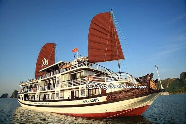 Kinh nghiệm chọn du thuyền du lịch Hạ Long: Nên đi du lịch Hạ Long bằng du thuyền nào đẹp, sạch sẽ, thân thiện?