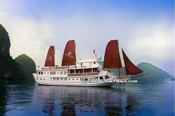 Kinh nghiệm chọn du thuyền du lịch Hạ Long: Những du thuyền đẹp, chất lượng ở Hạ Long bạn nên lựa chọn