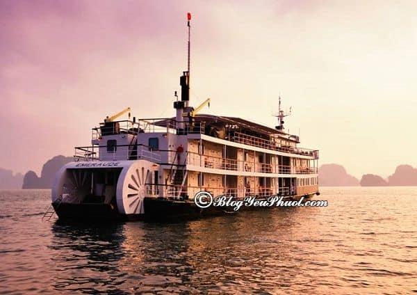 Kinh nghiệm chọn du thuyền du lịch Hạ Long: Du thuyền nào ở Hạ Long đẹp, tiện nghi, sạch đẹp