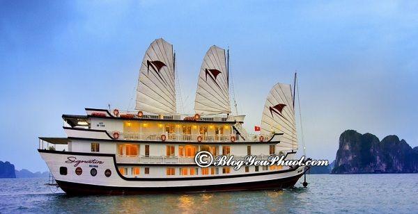 Kinh nghiệm chọn du thuyền du lịch Hạ Long