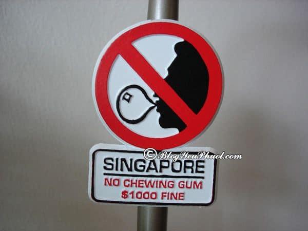 Những lưu ý cần nắm khi du lịch Gardens by the Bay, Singapore