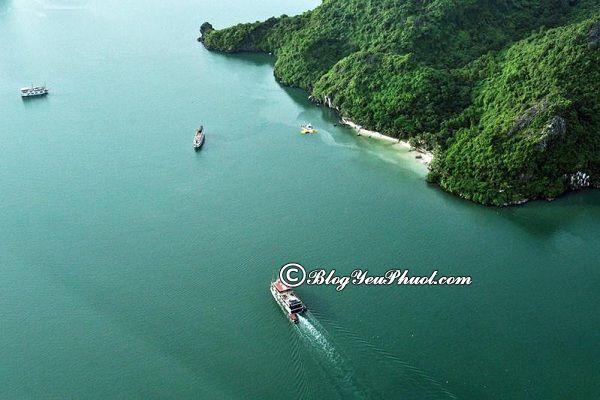 Kinh nghiệm du lịch Hạ Long bằng thủy phi cơ: Hướng dẫn đi tham quan, vui chơi ở Hạ Long bằng thủy phi cơ