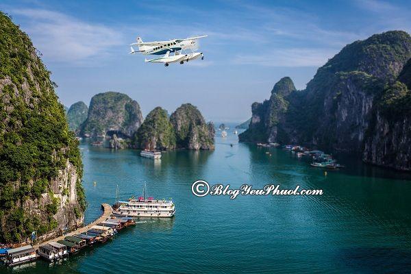Kinh nghiệm du lịch Hạ Long bằng thủy phi cơ: Hướng dẫn đi du lịch Hạ Long bằng thủy phi cơ