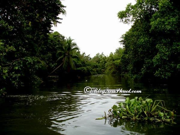 Địa điểm tham quan ở Bình Phước: Tư vấn lịch trình tham quan, vui chơi, ăn uống khi du lịch Bình Phước