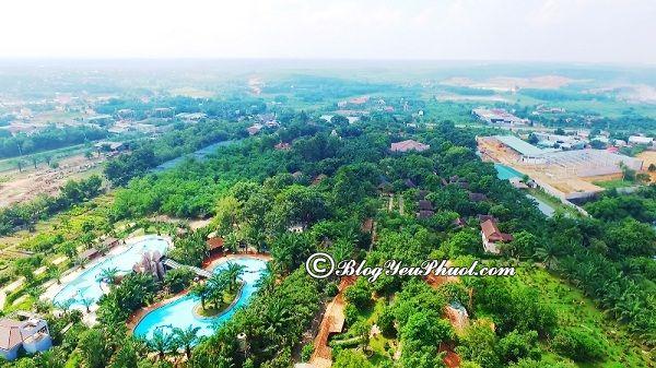 Đi đâu chơi khi du lịch Bình Phước? Địa điểm tham quan, vui chơi, ngắm cảnh, chụp ảnh đẹp, nổi tiếng ở Bình Phước