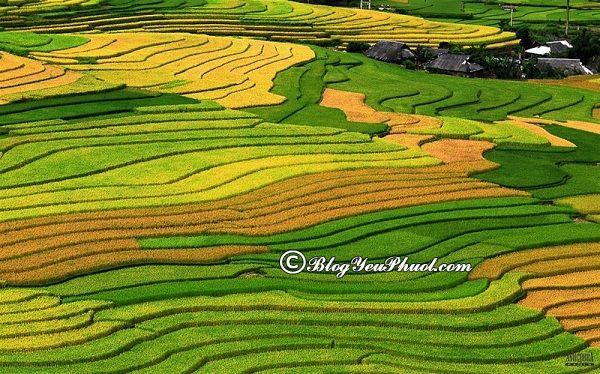 Kinh nghiệm du lịch bụi Pù Luông