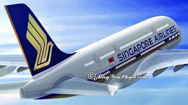 Các hãng không giá tốt có chặng bay Singapore- Việt Nam: Làm sao để săn được vé máy bay giá rẻ đi du lịch Singapore?