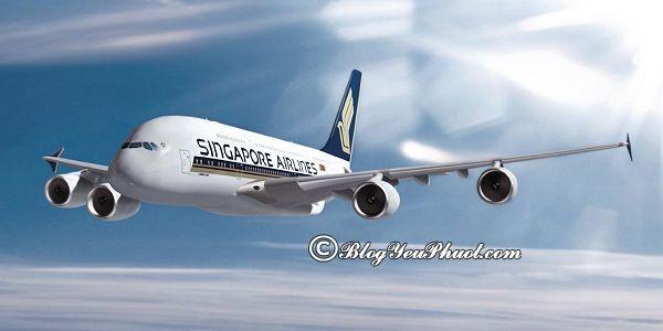 Kinh nghiệm săn vé máy bay khi du lịch Singapore: Hướng dẫn cách săn vé máy bay giá rẻ đi Singapore du lịch