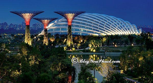 Những địa điểm du lịch miễn phí ở Singapore: Nên đi đâu chơi khi du lịch Singapore?