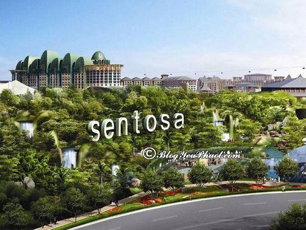 Giá vé tham quan các khu du lịch nổi tiếng ở Singapore: Địa điểm du lịch nổi tiếng, hấp dẫn nhất ở Singapore