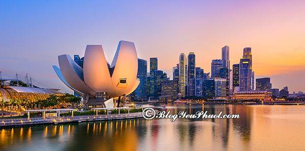 Những quán cà phê đẹp, nổi tiếng ở Singapore: Du lịch Singapore đi đâu uống cafe ngon, bổ, rẻ?