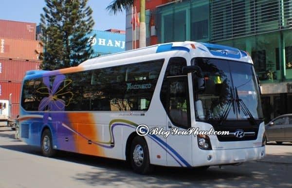 Phương tiện đi từ Huế đến Bình Định: Kinh nghiệm di chuyển từ Huế tới Bình Định nhanh, thuận tiện