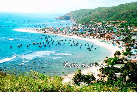 Nên đi du lịch Bình Định vào thời gian nào? Kinh nghiệm di chuyển từ Huế tới Bình Định du lịch