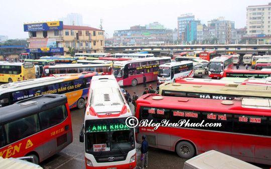Phương tiện di chuyển từ Hà Nội đến Ninh Bình: Kinh nghiệm đi du lịch Ninh Bình từ Hà Nội