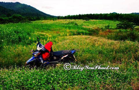 Đường đi từ Sài Gòn đến Hồ Tràm bằng xe máy: Hướng dẫn cách di chuyển từ Sài Gòn tới Hồ Tràm