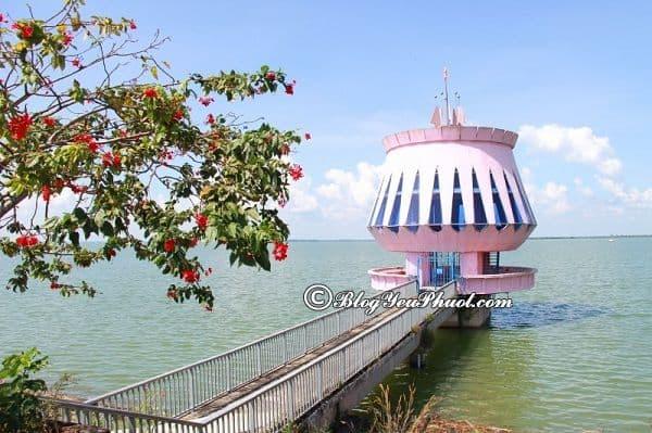 Du lịch Tây Ninh nên đi đâu chơi? Kinh nghiệm di chuyển từ Sài Gòn tới Tây Ninh du lịch