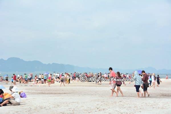 Bãi biển nhân tạo thu hút khách du lịch nhất và gần Hà Nội: Nên đi biển nào chơi ở gần Hà Nội?