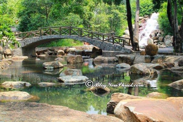 Điểm dã ngoại lí tưởng mới mẻ gần Sài Gòn: Địa điểm cắm trại, dã ngoại nổi tiếng ở gần Sài Gòn