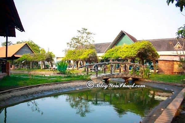 Điểm đến dã ngoại lí tưởng gần sài Gòn: Nên đi chơi ở đâu gần Sài Gòn giá rẻ, nổi tiếng nhất?