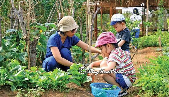 Địa điểmvui chơi lý tưởng cho gia đình ở Sài Gòn: Địa điểm du lịch, tham quan nổi tiếng ở Sài gòn dành cho gia đình