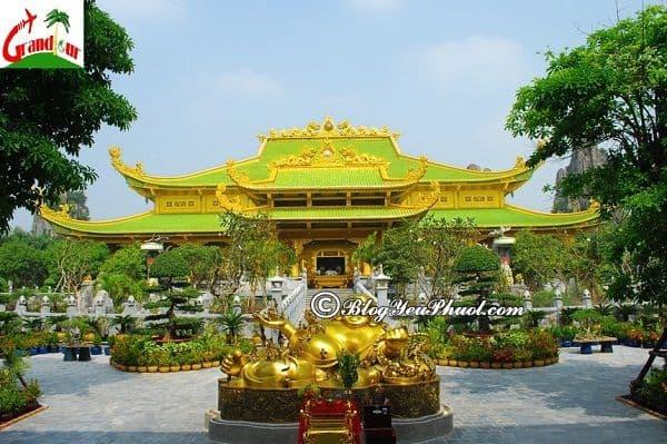 Địa điểm vui chơi khá mới mẻ ở Sài Gòn cho gia đình: Du lịch gia đình ở Sài Gòn nên đi đâu?