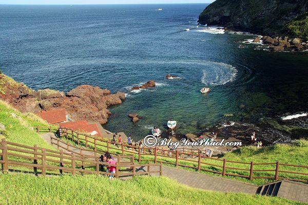 Du lịch đảo Jeju 3 ngày 2 đêm tự túc