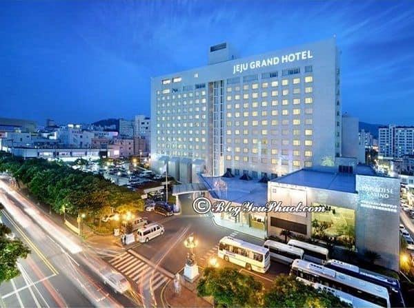 Ở đâu khi du lịch đảo Jeju 3 ngày 2 đêm? Tư vấn đặt phòng khách sạn đẹp, chất lượng tốt ở đảo Jeju, Hàn Quốc