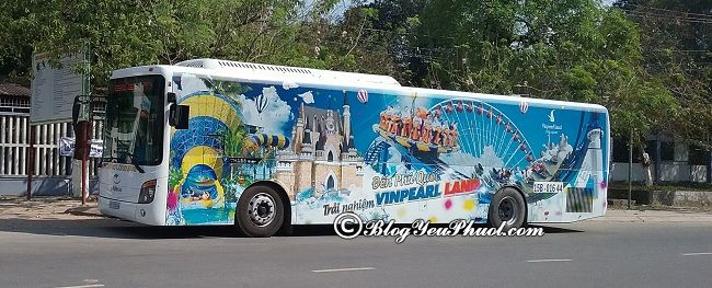 Phương tiện đi tham quan Vinpearl Safari Phú Quốc: Đến Vinpearl Phú Quốc bằng cách nào?