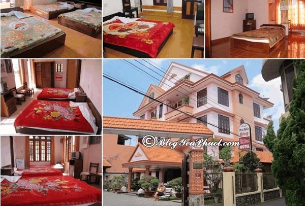 Những khách sạn 2 sao gần chợ, giá tốt ở Đà Lạt: Khách sạn 2 sao nào ở Đà Lạt gần chợ, đẹp, tiện nghi