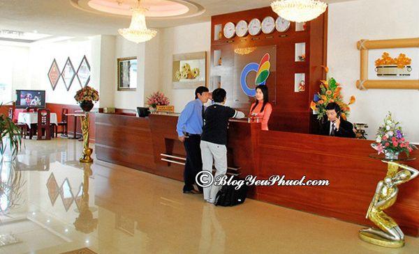 Khách sạn Mai Vàng Đà Lạt review chất lượng phục vụ, tiện nghi: Có nên đặt phòng khách sạn Mai Vàng Đà Lạt hay không?