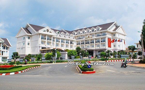 Đánh giá vị trí, chất lượng của khách sạn Sammy Đà Lạt: Có nên đặt phòng khách sạn Sammy Đà Lạt hay không?