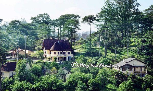 Kinh nghiệm chọn khách sạn 5 sao gần trung tâm Đà Lạt: Những khách sạn 5 sao tiện nghi, đẹp, nổi tiếng gần trung tâm Đà Lạt