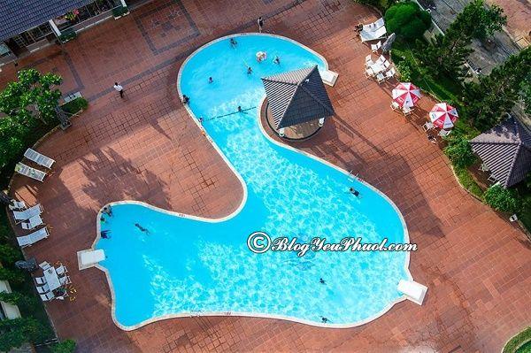 Dịch vụ của khách sạn Sammy Vũng Tàu: Đánh giá tiện nghi, phòng ốc, điểm nổi bật của khách sạn Sammy Vũng Tàu