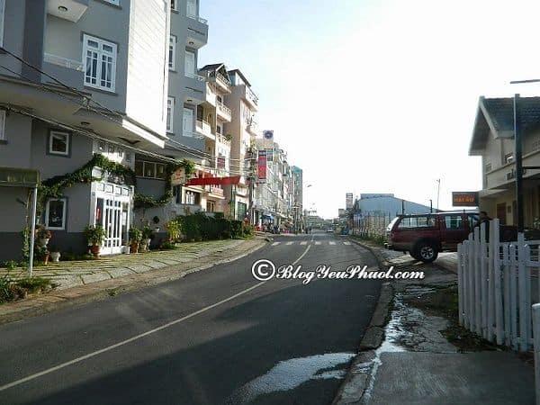 Kinh nghiệm chọn khách sạn ở đường Nguyễn Chí Thanh, Đà Lạt: Địa chỉ những khách sạn đẹp, thân thiện trên đường Nguyễn Chí Thanh, Đà Lạt