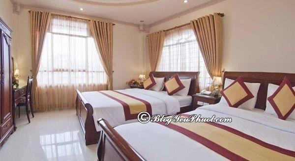 Khách sạn uy tín ở đường Bùi Thị Xuân, Đà Lạt đẹp, tiện nghi đầy đủ. Nên ở khách sạn nào trên đường Bùi Thị Xuân?