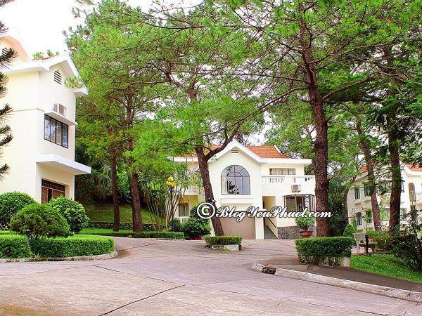 Những khách sạn giá rẻ, tốt tại Bãi Cháy, Hạ Long: Địa chỉ những khách sạn đẹp, tiện nghi, sạch sẽ ở Bãi Cháy, Hạ Long