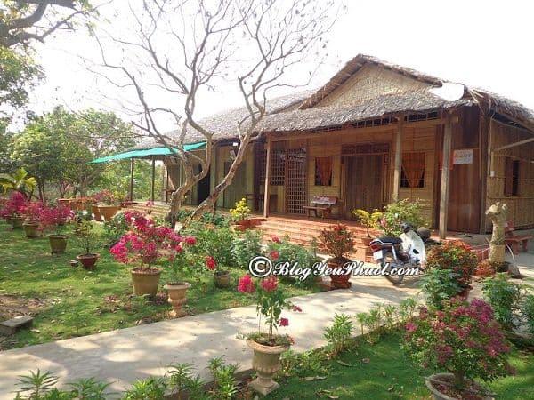 Du lịch miệt vườn Vĩnh Long nên ở đâu? Kinh nghiệm tham quan, du lịch miệt vườn Vĩnh Long