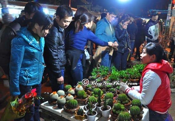 Nên đi phượt Nam Định vào thời gian nào? Du lịch Nam Định đi đâu chơi, tham quan, mua sắm?