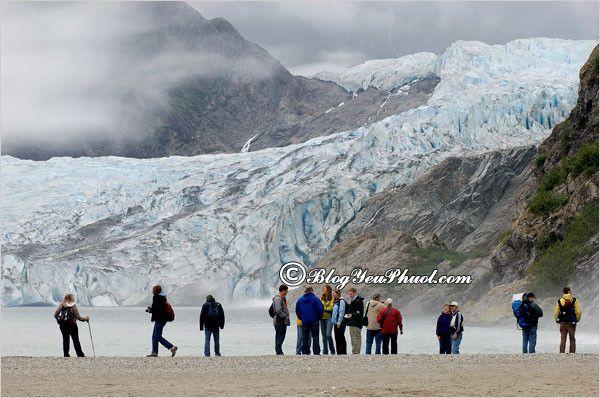 Du lịch Alaska thăm quan cánh đồng băng: Địa điểm tham quan, ngắm cảnh, chụp ảnh đẹp, nổi tiếng ở Alaska