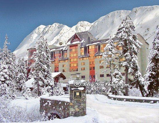 Ở đâu khi đến Alaska du lịch? Kinh nghiệm đi du lịch Alaska tự túc, giá rẻ