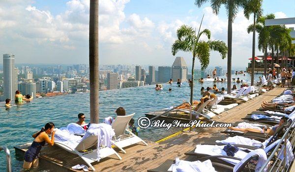 Chiêm ngưỡng phong cảnh tại Marina Sands Skypark - Singapore: Kinh nghiệm du lịch Marina Bay tự túc, giá rẻ