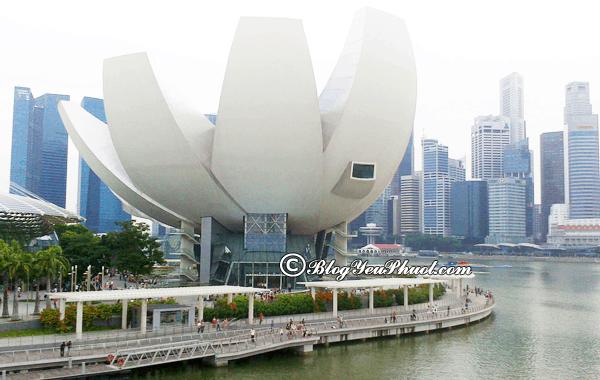 Chơi gì ở Marina Bay, Singapore? Hướng dẫn đi tham quan, vui chơi khi du lịch Marina Bay