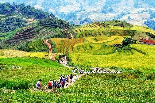 Phượt Mai Châu vào thời điểm nào đẹp nhất? Nên đi du lịch Mai Châu khi nào?